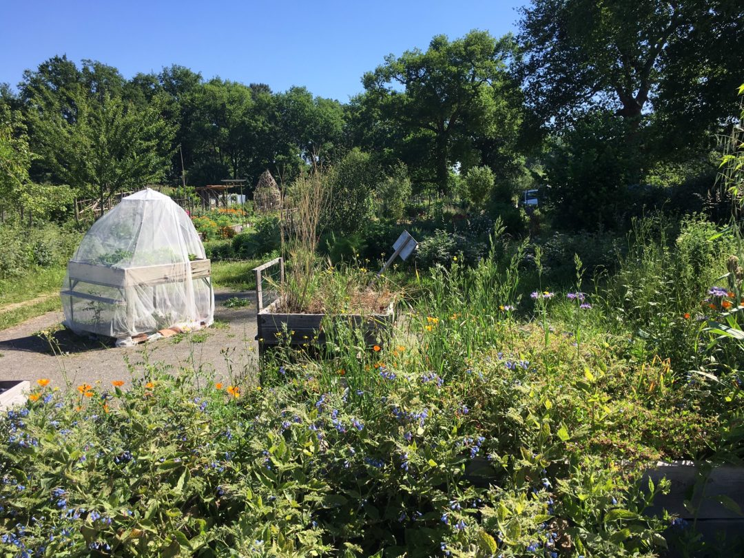 jardin-fondation