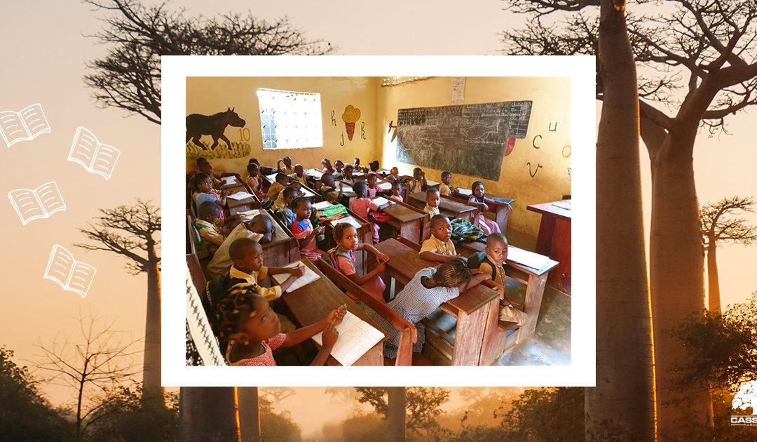 Lire sous le baobab